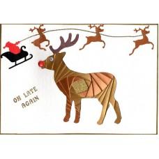 C5 Deer / Stag