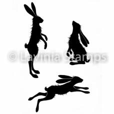 Whimsical Hares LAV482